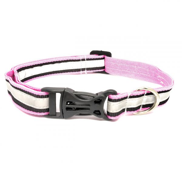 Reflective Collar For Street Dogs