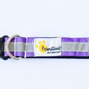 Purple Reflective collars