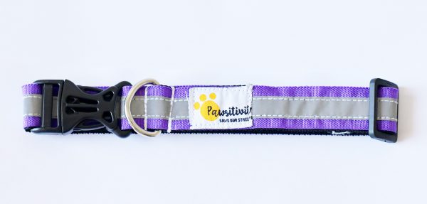 Purple Reflective collars