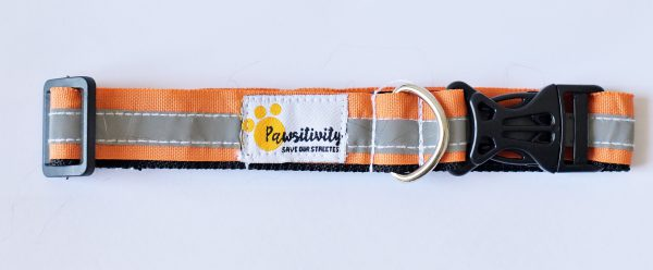 Orange Reflective Collars