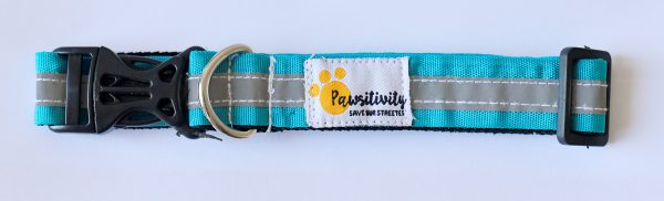 Reflective collars for street dogs